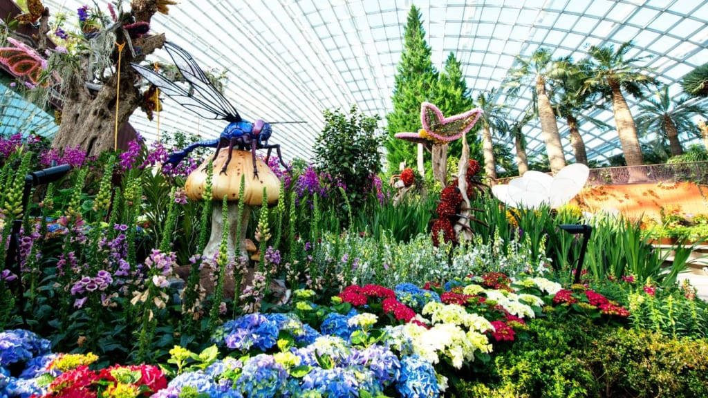 Flower Dome in Gardens By The Bay